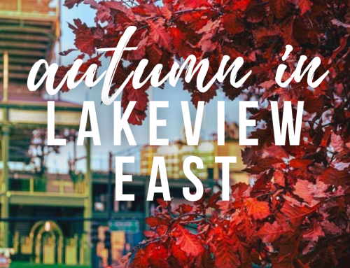 Places to Celebrate Spooky Season in Lakeview East and Wrigleyville